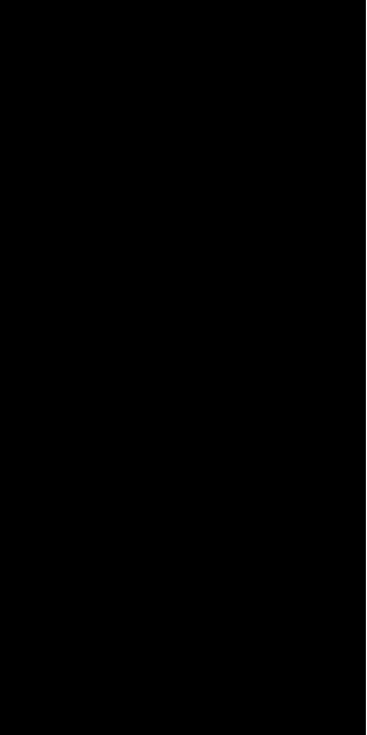Motif 38