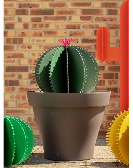 Jardin intemporel - CACTUS BOULE - 50cm (Fleur en option)